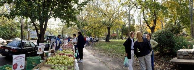 Clark-Park-Market